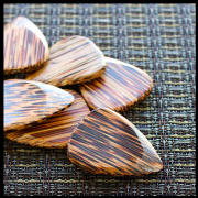 Timber Tones - Coconut - 1 Guitar Pick | Timber Tones